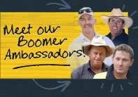 Get a FREE sample of Boomer